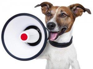 dog shouting in megaphone