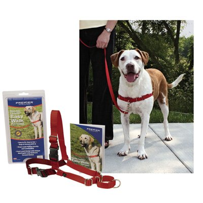 how to put on easy walk harness