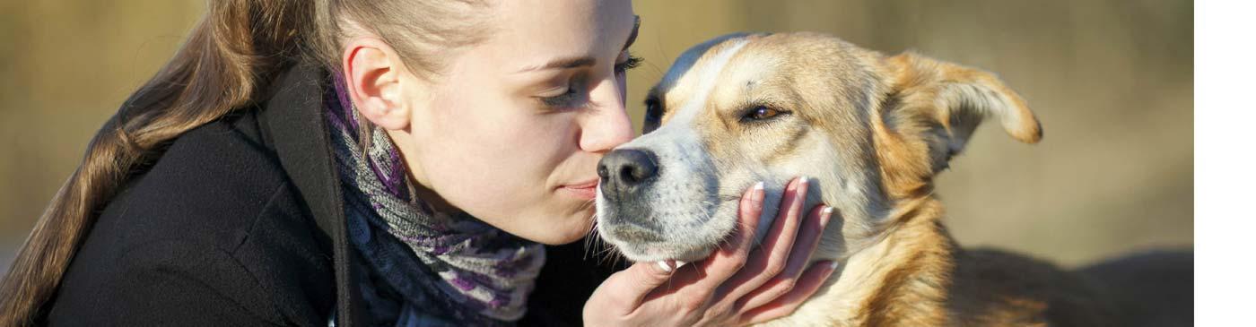 17-Essentials-of-Pet-Care-banner_C