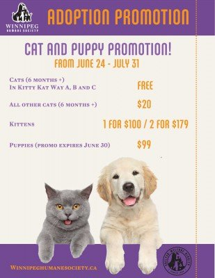 CatPuppyPromoJuly2016