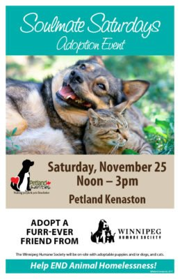 Petland Adoption Event @ Petland Kenaston   Winnipeg   Manitoba   Canada